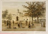 1505-III-46rood-0009 Musis Sacrum, 1880