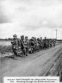 1802 SLAG OM ARNHEM, september 1944