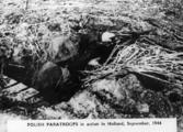 1803 SLAG OM ARNHEM, september 1944