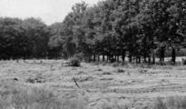 1841 Airbornekerkhof, augustus 1945
