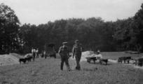1847 Airbornekerkhof, augustus 1945