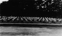 1849 Airbornekerkhof, 1945-1946