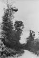 2016 SLAG OM ARNHEM, september 1944