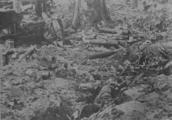 2022 SLAG OM ARNHEM, september 1944