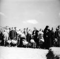 2437 HERDENKINGEN, 17 september 1946