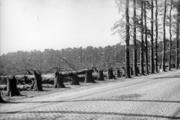 2559 VERWOESTINGEN, 1945