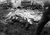 2649 TWEEDE WERELDOORLOG, 15 juni 1943