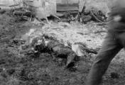 2740 TWEEDE WERELDOORLOG, 1943