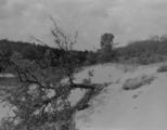2887 VERWOESTINGEN, 17-09-1944 t/m 14-04-1945