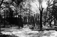 3764 VERWOESTINGEN, 1945