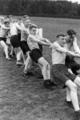 4382 FOTOCOLLECTIES - NSB-FOTOARCHIEF, 1940-1944