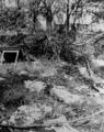 4431 FOTOCOLLECTIES - AIRBORNEMUSEUM, 1945