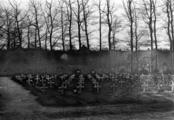 4484 FOTOCOLLECTIES - BOOYS SR, P.J. DE, maart 1946