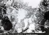 4773 LUCHTFOTO'S, 22 februari 1944