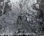 4775 LUCHTFOTO'S, 21 februari 1944