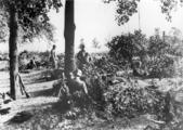 5496 SLAG OM ARNHEM, september 1944