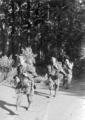 5603 SLAG OM ARNHEM, 17-09-1944 t/m 26-09-1944
