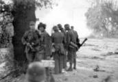 5668 SLAG OM ARNHEM, 19 september 1944