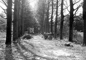 5795 SLAG OM ARNHEM, september 1944