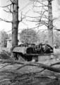 5798 SLAG OM ARNHEM, september 1944