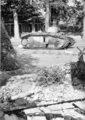 5811 SLAG OM ARNHEM, september 1944