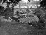 5835 SLAG OM ARNHEM, september 1944