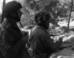 5853 SLAG OM ARNHEM, september 1944