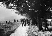 5901 SLAG OM ARNHEM, september 1944