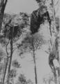 6057 SLAG OM ARNHEM, 17-09-1944 t/m 27-09-1944