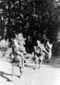 6065 SLAG OM ARNHEM, 17-09-1944 t/m 27-09-1944