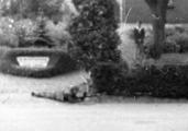 6083 SLAG OM ARNHEM, 17-09-1944 t/m 27-09-1944