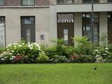 4230 Woningen Rodenburgstraat, 02-07-2021