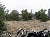 4238 Bartok Park zonder Feestaardvarken, 02-07-2021