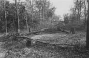 1 Westelijke hoofdlaan van Hoog Oorsprong, 1945