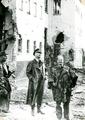 240 WO II, september 1944