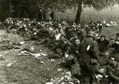 256 WO II, 20 september 1944