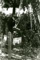 263 WO II, september 1944