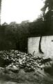 341 WO II, 1945