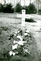347 WO II, 1945