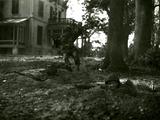 446 WO II, 1945