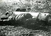 454 WO II, 1945