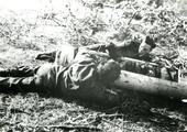 455 WO II, 1945