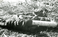 456 WO II, 1945